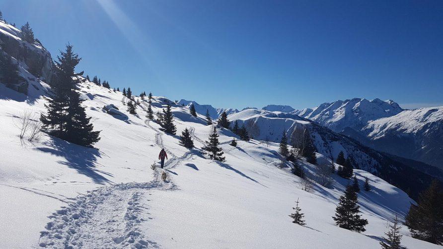 Ski Vaujany Alpe d'Huez