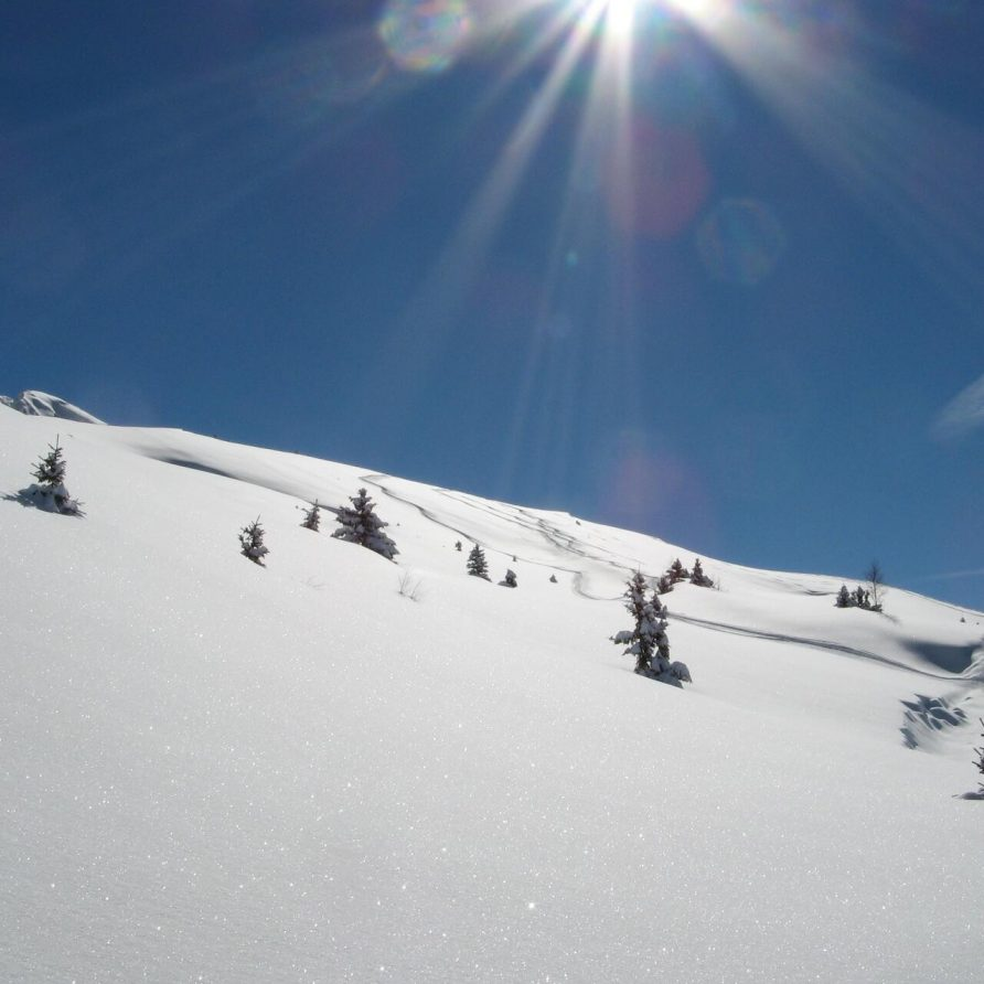 Winterpaket: Skiurlaub à la carte